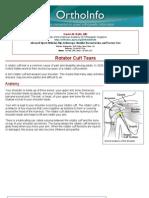 rotator cuff tears-orthoinfo - aaos