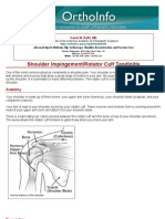 shoulder impingementrotator cuff tendinitis-orthoinfo - aaos