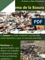 7.La basura.pptx