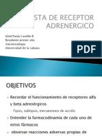 agonistasdereceptoresadrenergicos-100228125350-phpapp01