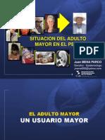 1.Situacion Del Adulto Mayor en El Peru