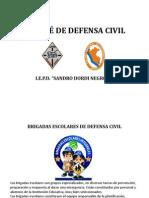 COMITÉ DE DEFENSA CIVIL
