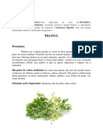 Plante Cu Principii Amare