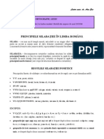 Tema I.4. Principiile Silabatiei