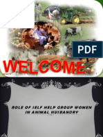 role of SHG  women in animal husbandry