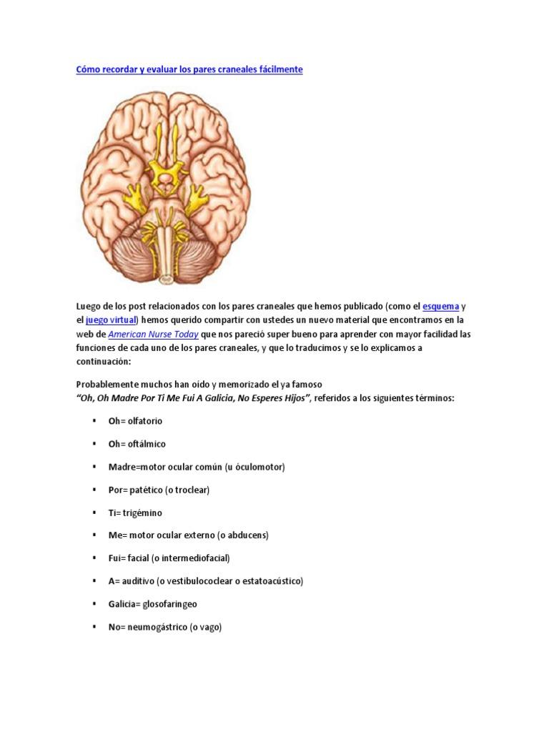 12 nervios craneales y sus pruebas de diabetes