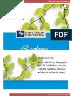 137583351-Monografia-Educacion-Ambiental