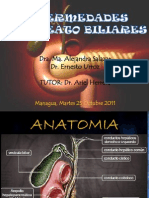 16-enfermedadespancreatobiliares-111117125608-phpapp02