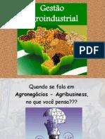 AGROINDUSTRIAL - GESTÃO