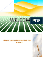 Cereal Based Cropping System in India