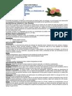 4. Bocadillo de Guayaba Con Panela - Ficha Tecnica