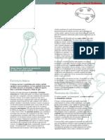 Neurociência_01SistemaNervoso
