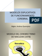 Modelos Explicativos de Funcionamiento Cerebral -