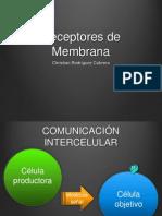 receptores-de-membrana-exposicic3b3n.ppt