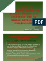A atuação do Assistente Social na Atenção Básica e a interface com os demais níveis de complexidade - Ines Pelizzarro