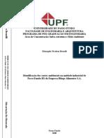 2006elisangelabrandli.pdf