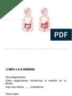Neurodisplasia Intestinal Enfermedad de Hirschsprung 2 (1)