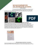 Pemanfaatan Saccharomyces Cerevisiae Dalam Industri