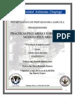Reporte Practica 4 Viveros Forestales