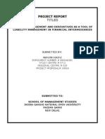 Report Liabilitymanagement