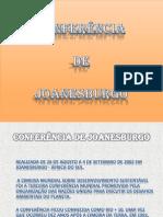 Conferencia de Joanesburgo Miguel Brizida e Manuela1