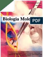 Relatórios de Biologia Molecular.pdf