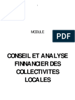 Conseil Et Analyse Finnancier Des Collectivites Locales