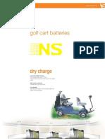 NS Golf Cart(1)