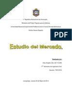 Trabajo de Estudio del Mercado.docx