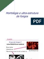 aula5_fungos1