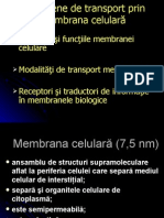 c 4 Transport Membra Na