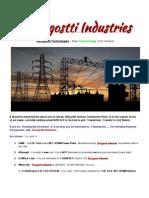 PowerPlantOwnershipviaDeLagosttiIndustries TURN KEYresolveoption