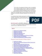 Los modelos de redes y los programas de números enteros son aplicables para una gran variedad de modelos decisión