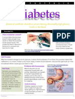 Cell Portfolio Diabetes Tt
