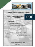 Prepa-lab Informe 5-6 (Imprimir) 2008