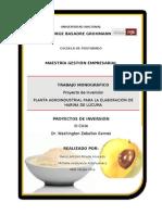 92682181 Proyecto Harina de Lucuma Michela Marco