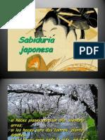 SAbiduRIA_jaPOneSA