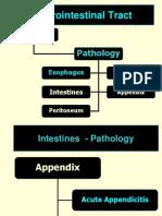 Appendix and Peritoneum