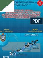 Defensa Denny 2012 Final