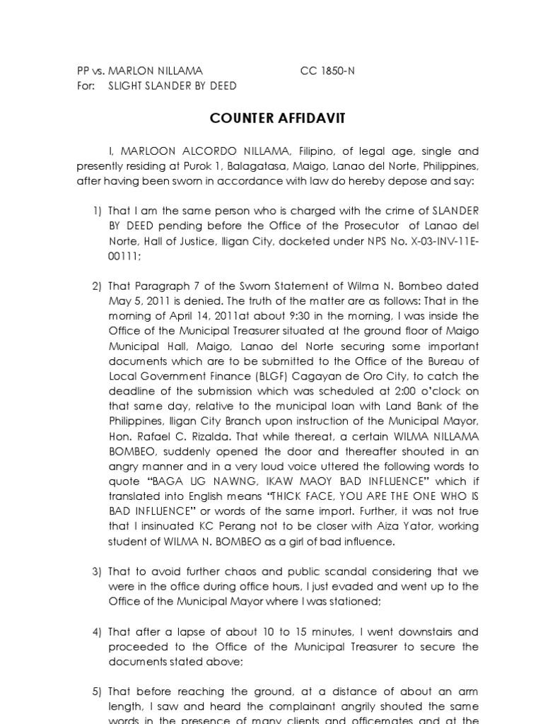 Counter Affidavit SAMPLE | Public Law | Government