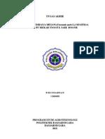 Widi Indarwati C1003050.pdf