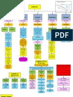 Ferguson - Business Associations Flowcharts Spring 2009