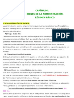 APUNTES BINES PUBLICOS