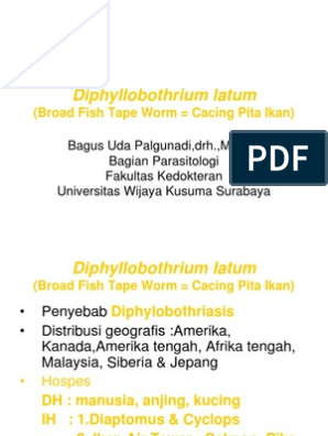 diphyllobothriasis în engleză