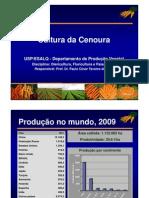 Aula_Cenoura_Hortica_2012 - 1.pdf