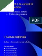 Dimensiuni culturale