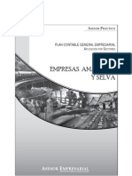 PCGE- EMPRESAS APICACION AMAZONIA Y SELVA.pdf