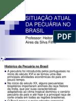 1_SITUAÇÃO_ATUAL_DA_PECUÁRIA_NO_BRASIL