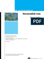IPA-Horseradish-Tree-Risk-Assessment_moringa.pdf
