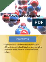 Moleculas  inorganicas